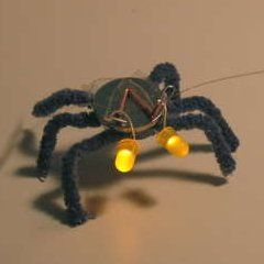Blinky Bugs